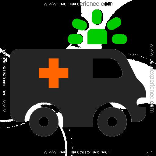 Ambulancia negra con detalles anaranjados y verdes página de emergencias